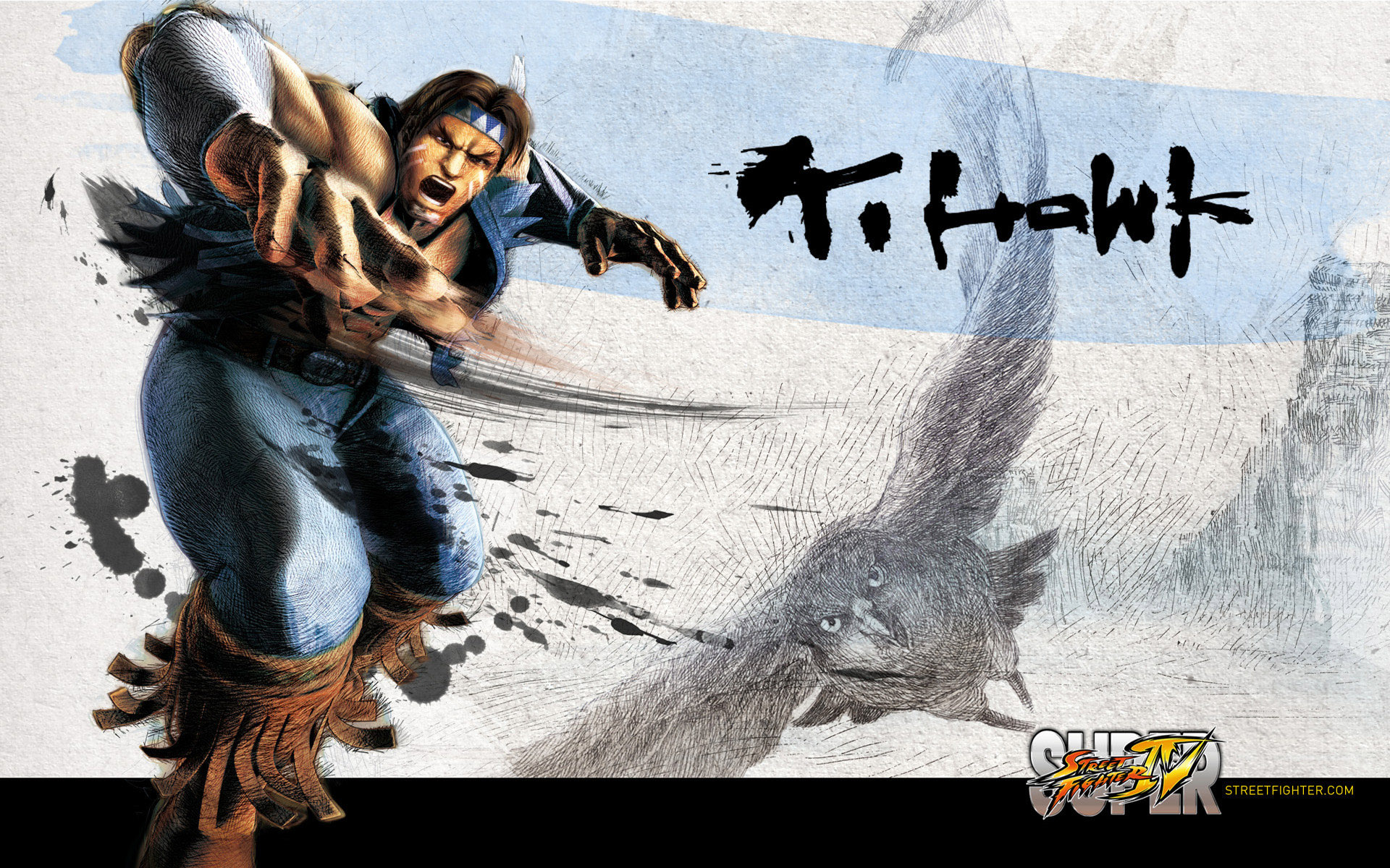 Обои Street Fighter IV Ti Hawk
