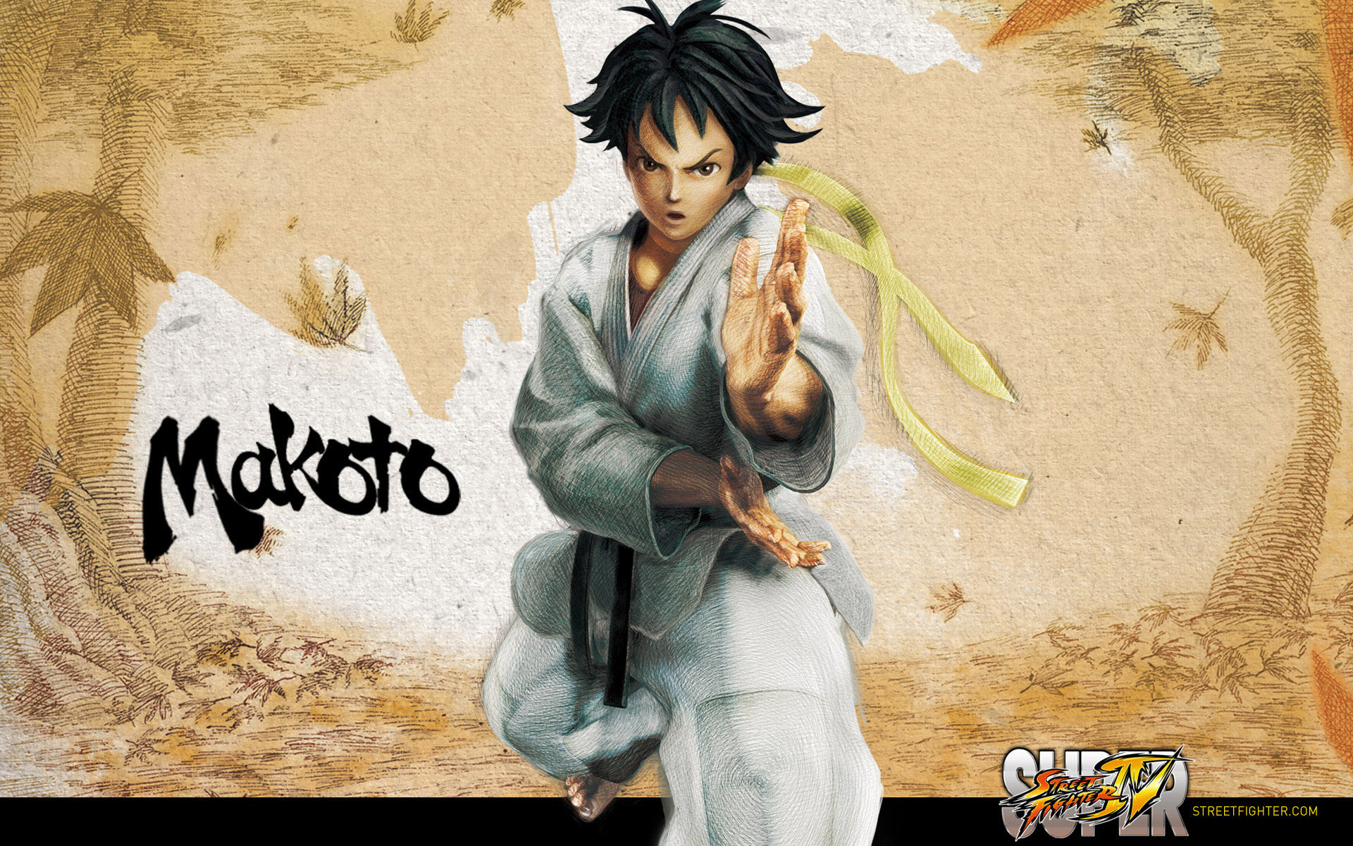 Обои Street Fighter IV Makoto